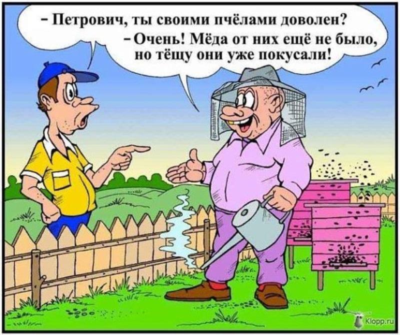 ТЕЩА.jpg