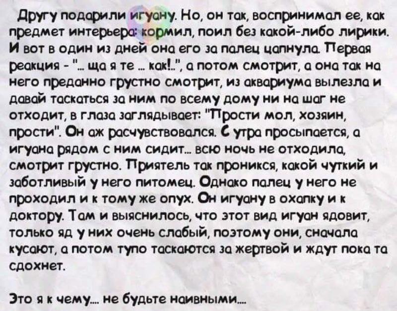 FB_IMG_1423133531869.jpg
